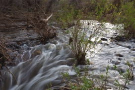 Rushing Water on the Agua Fria River