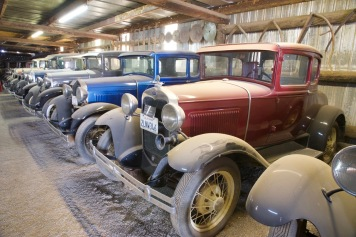 Many more cars in a large barn.